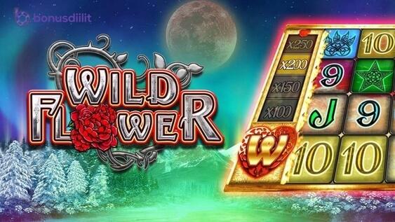 wild flower big time gaming bonusdiilit.com